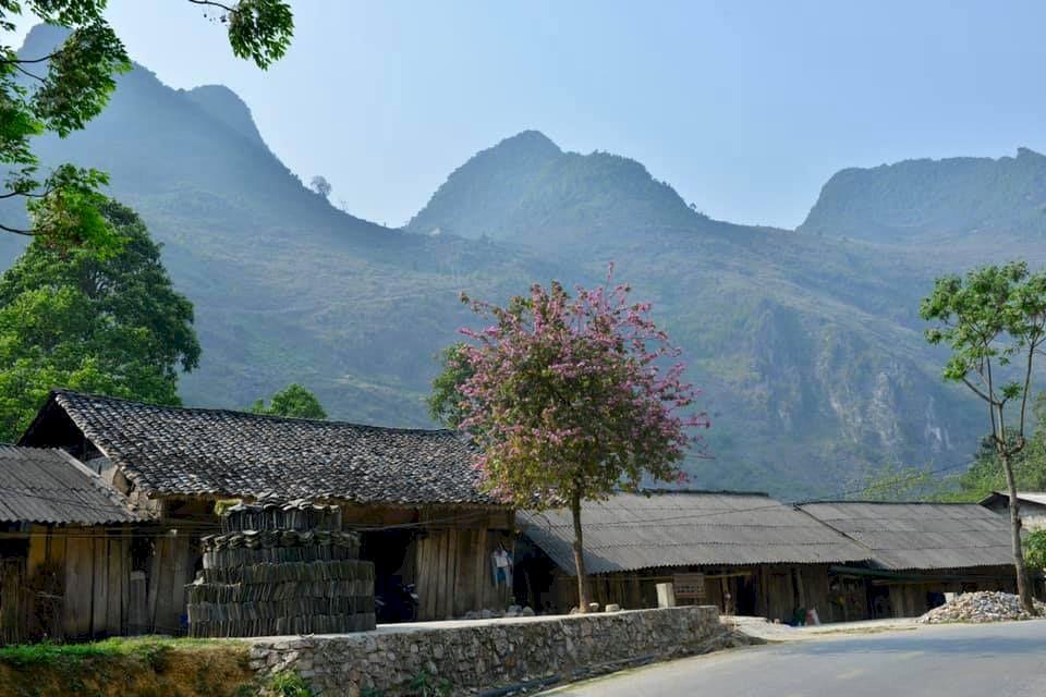 Subaru Forester & vùng đất Hà Giang: Hành trình về với thiên nhiên